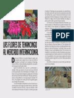 Las flores de Tenancingo al mercado internacional