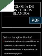 TEJIDOS BLANDOS.ppt