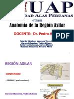 4 Región axilar.pdf