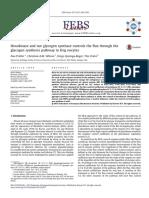 Paper control de la hexokinasa sobre el flujo de la síntesis de glicogeno
