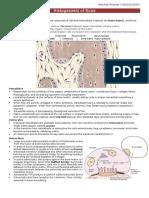 Histogenesis of Bone