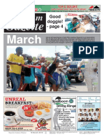 Platinum Gazette 18 March 2016