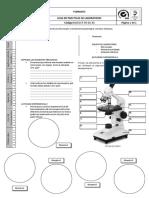 Reconociendo las partes de un microscopio 2do.pdf
