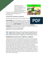 minerales proteinas