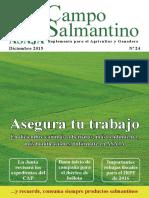 Campo Salmantino Diciembre 2015