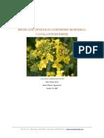 Washington State Biofuels Feedstock