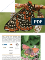 Butterflies of Toronto - A Guide to Their Remarkable World (2010)