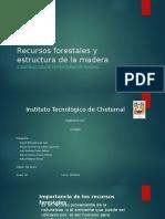 Recursos Forestales y Estructura de La Madera