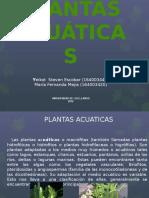 PLANTAS-ACUÁTICAS (1)