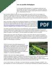 Apprendre à cultiver un jardin biologique