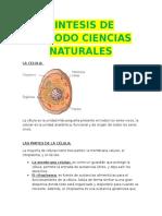 Sintesis de Periodo Ciencias Naturales