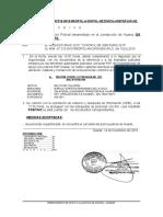 NOTA INFORMATIVA Nº 316- 14NOV15.docx