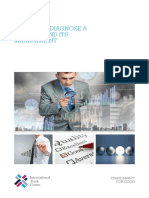 A Guide to Diagnose a Business and Its Management