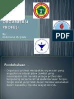 ORGANISASI PROFESI.ppt