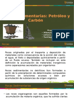 Carbon Petroleo Final