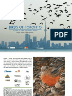 Birds of Toronto - A Guide to Their Remarkable World (2011)