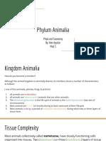 phylum animalia