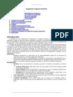 Seguridad e Higiene Industrial Prevencion Riegos