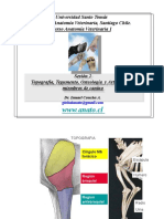 002 Top, Teg, Ost, Art Miembros-PDF