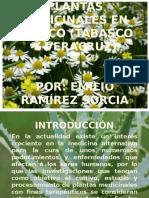 plantasmedicinalesenmxicotabascoyveracruz-121203184142-phpapp02.pptx