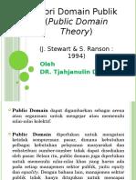 Public Domain Theory