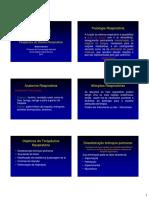 Sistema_Respiratorio..pdf