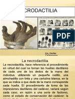 Necrodactilia CLASE