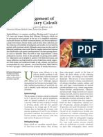 Management Urinary Calculi