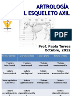 Artrologia Axil