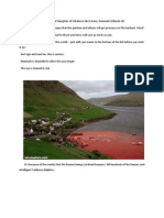 Annual Slaughter of Whales in the Faroes - Denmark