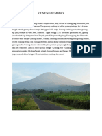 Jalur Gunung Sumbing