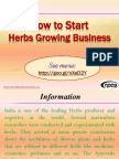 How to Start Herbs Growing Business