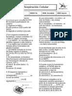 Ficha de Respiración Celular Firme 2014