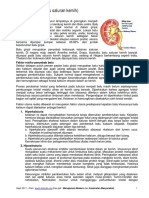 Urolithiasis (Batu Saluran Kemih) - Medicafarma