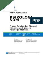Ruang Lingkup Psikologi SDM