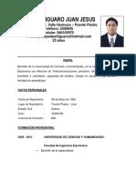 Curriculum Pelaez Higuaro