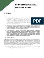 Principios Fundamentales La Percepcion Visual