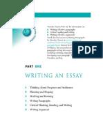 Troyka Writing a Essay