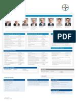 Bayer Organizational Structure