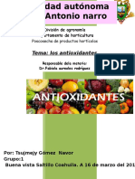 antioxidante.docx