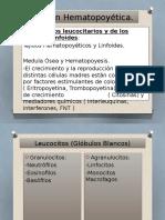 Función Hematopoyética.pptx