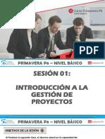 Primavera p6 Bas Sesión 1 Manual