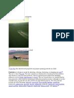 Wikipedia of Pesticide