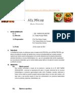 Plan de Trabajo de Feria Nutritiva2016
