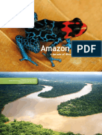 Informe Amazonia Viva 1990 2010