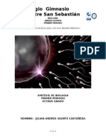 Sintesis de Biologia Octavo Primer Periodo