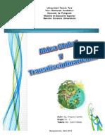 Aldea Global y Transdisciplinariedad