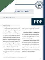 2013-05-18-182252_Sd. Túnel Carpo