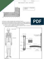 Practico Esqueleto Artic. Osific. curso nocturno IDAL
