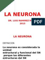9 La Neurona